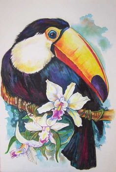 Toucan and Orchids Painting by Lilian Barac - Toucan and Orchids ... fineartamerica.