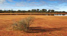 Waterhole Goldfields WA