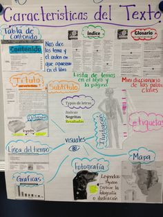 Text features anchor chart in Spanish