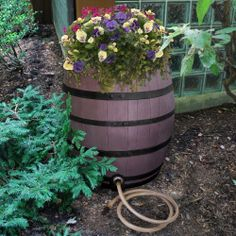 This whisky barrel rain collection system is a perfect match for rustic exterior decor. Save water in style!