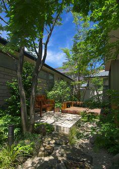住居棟と診療所に囲まれた落葉樹の中庭。|テラス|デザイン|ナチュラル|タイル|アーチ|モダン|インテリア|