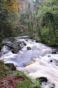The Clare River flows through Clare Glens on Tipperary and Limerick border, Ireland