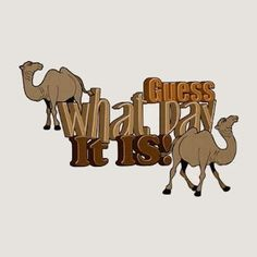 Guess What Day It Is Pictures, Photos, and Images for Facebook, Tumblr, Pinterest, and Twitter