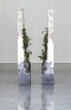 Sculpture of Jamie North. Art Concret, Concrete Art, Organic Sculpture, Art Sculpture, Wall Sculptures, Land Art, Steinmetz, Beton Design, Australian Plants