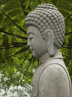 """""""The truth is not always beautiful, nor beautiful words the truth.""""    ~  Lao Tzu, Tao Te Ching  ॐ lis"""