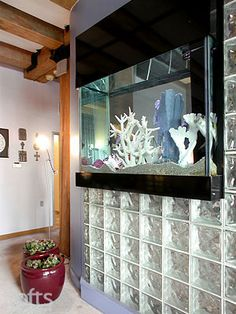 maybe these glass blocks in the wall between my laundry room and the entry way (not the fish tank!)