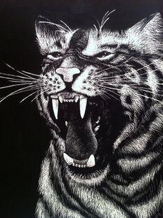 Tiger Scratchboard by EeyoresDarkSide.deviantart.com on @deviantART