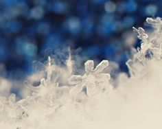 Snowflake Holiday Photograph  winter blue by AmeliaKayPhotography, $6.00