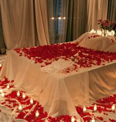 The Bed of Roses