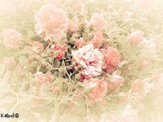 E' la tua dolcezza che mi riempie di primavera