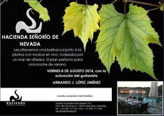 #NochedeVerano próximo 8 de agosto Actuación de Armando J. López Jiménez