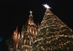 San Miguel de Allende, Mexico - December 2015. Even though the tree was only 25 to 30 feet tall, taking this photo at a low angle made them near equals. #PhotographyTricks There's a story to this tree. I've watched them decorate it several times over the past three Christmases... #ChristmasTree