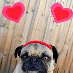 valentine's day cuddly toys