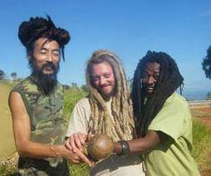 Rasta Dreads, Rasta Hair, Dreadlocks, Jamaica People, Short Locs Hairstyles, Jah Rastafari, European Men, Dreads Styles, Afro Punk