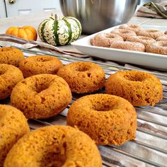 Mini Gluten Free Pumpkin Donuts make but with less sugar and no xanthan gum and coconut oil Donut Maker Recipes, Gf Recipes, Dairy Free Recipes, Pumpkin Recipes, Fall Recipes, Sweet Recipes, Whole Food Recipes, Snacks Recipes, Recipies