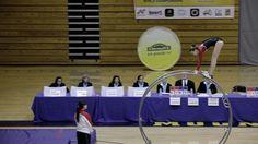 World Championships in Gymwheel 2016  Leonie Botta vault final 6th Place