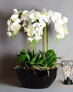 Shop over 100 beautiful artificial flower arrangements. Artificial Orchids, Artificial Flower Arrangements, Table Centers, White Orchids, Centre Pieces, Table Centerpieces, Dining Table, Plants, Black