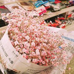 Boquette Flowers, Luxury Flowers, My Flower, Dried Flowers, Planting Flowers, Beautiful Flowers, Wedding Flowers, Gypsophila, Flower Aesthetic