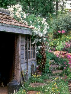 Naturalizing a rustic old garden shed maintains it& beauty as flowers grow . - Naturalizing a rustic old garden shed maintains it& beauty as flowers grow . Lush Garden, Dream Garden, Rustic Gardens, Outdoor Gardens, Jardin Luxuriant, Rustic Shed, Best Greenhouse, Greenhouse Ideas, Simple Greenhouse