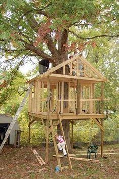 Ağaç İçinde Ahşap Ev Resimleri. TreehousesHouse BuildingTree ...