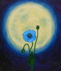 """Oil painting on primed cardboard  """"The blue poppy and the moon"""""""