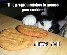 No way, you are not getting my cookies too, you already took my TV