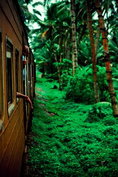 Sri Lanka >>> Love this photo and would love to visit Sri Lanka! Have you been? What did you think?