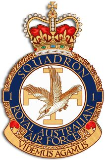 "No. 1 Squadron is a Royal Australian Air Force (RAAF) squadron headquartered at RAAF Base Amberley, Queensland. Controlled by No. 82 Wing, it is equipped with Boeing F/A-18F Super Hornet multi-role fighters. The squadron was formed under the Australian Flying Corps in 1916 and saw action in the Sinai and Palestine Campaigns during World War I. The squadron operates Boeing F/A-18F Super Hornet multi-role fighters, the first of which entered service in March 2010. Nicknamed the ""Rhino"", its…"