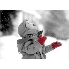 Viabella Boy Catching Snowflakes Boxed Christmas Cards ($10) ❤ liked on Polyvore featuring home, home decor, stationery and grey multi