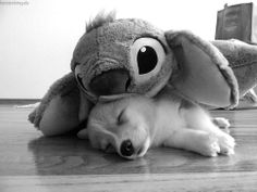Corgi and Stitch