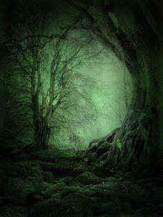 Green light . . . stillness . . . shallow breathing . . .