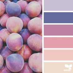 today's inspiration image for { fresh hues } is by @thebungalow22 ... thank you, Steph, for another fantastic #SeedsColor image share!