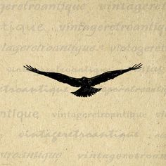 Digital Flying Bird Printable Image Download Graphic Antique Clip Art. Printable digital graphic download for printing, transfers, papercrafts, and many other uses. This digital graphic is high quality at 8½ x 11 inches large. Transparent background version included with every graphic.
