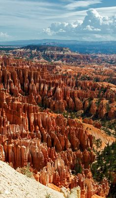 One of the most beautiful places in the world. Bryce Canyon National Park, Utah l Places to visit l Travel destination l Tourism Arches Nationalpark, Yellowstone Nationalpark, Bryce Canyon, Canyon Utah, Glen Canyon, National Parks Usa, Zion National Park, National Forest, Beautiful Places In The World