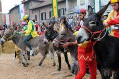 Donkey Palio - Alba 1st Sunday of October
