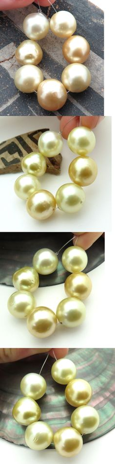 Pearl 10243: 7Pc Rare Aa South Sea Shining Gold And Cream Xl 12.1-13.7Mm Cultured Pearls -> BUY IT NOW ONLY: $127.2 on eBay!