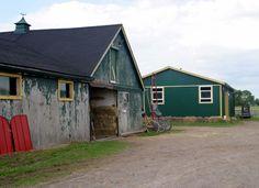 Harness Horse Barn