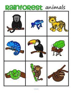 Rainforest Animals Bingo Plus Supporting Printables Rainforest Animals For Kids, Rainforest Preschool, Rainforest Classroom, Rainforest Crafts, Rainforest Biome, Rainforest Project, Preschool Jungle, Jungle Crafts, Jungle Animals
