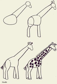 How-to-draw-Cute-Animals-44.jpg (600×870)