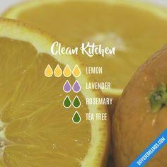 Clean Kitchen - Essential Oil Diffuser Blend
