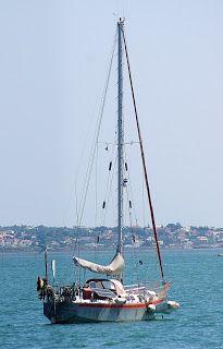 barcos da ria formosa -
