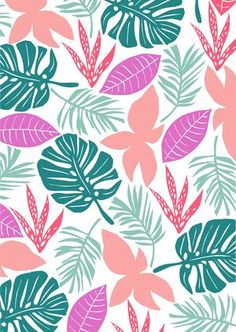 Colourful leaves | Hannah Rampley