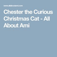 Chester the Curious Christmas Cat - All About Ami