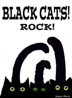Black #cats rock.