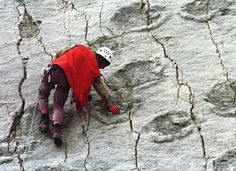 Astonishing Huge Vertical Dinosaur Rock Wall With Thousands Of Gigantic Footprints In Bolivia - MessageToEagle.com