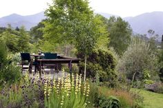 """Florencia Paredi, Travel Account Administrator: """"I have just started at Seasonz - but cant wait to visit Edenhouse's Cottage in Nelson"""". Luxury Lodges, Cant Wait, New Zealand, Cottage, Mountains, Nature, Travel, Florence, Naturaleza"""