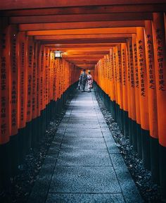 Tunnel of red torii gates ⛩