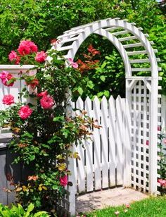I like this white picket fence and arbor for the backyard garden
