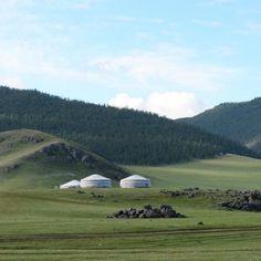 Possible de se sentir chez soi en #Mongolie?  Home is where you feel good even in #mongolia. #yourte #green #hills