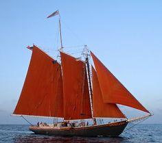 """Schooner """"Roseway"""" I love tanbark (red) sails"""